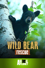 Wild Bear Rescue on TELUS Pik TV