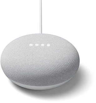Chalk Google Nest Mini Front
