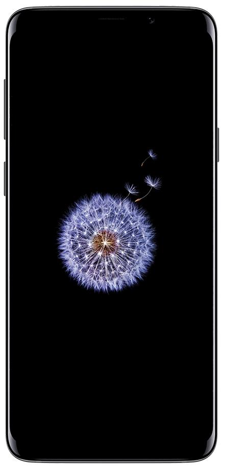 S9 / S9+ Titanium Grey