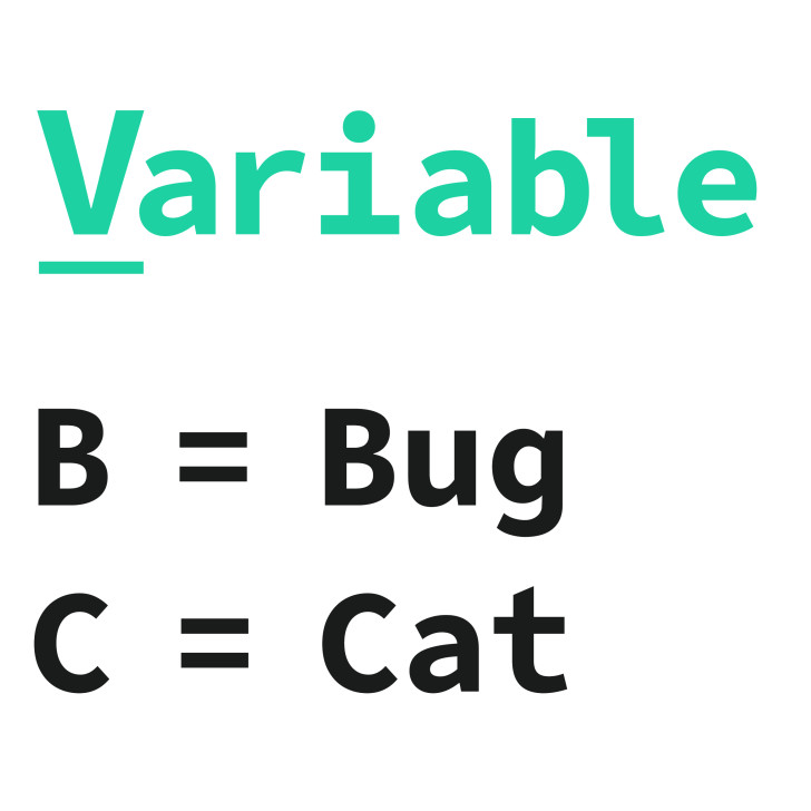 A variable lets you store data to use later.