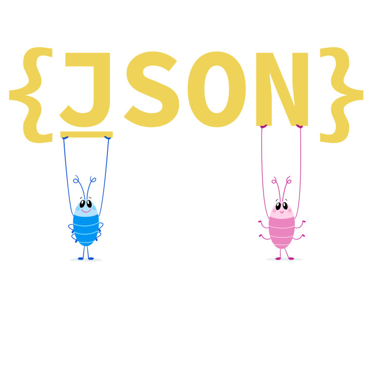 JSON is a way to organize data