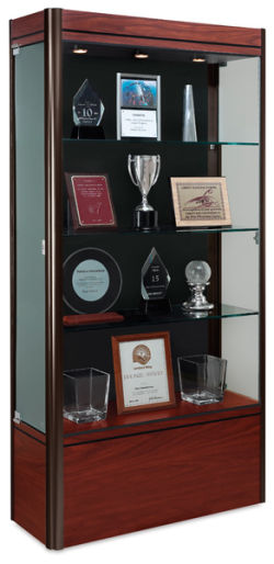 Display Case, Cherry Base with Dark Bronze Frame
