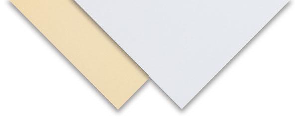 Pacon 2-Ply Tag Board