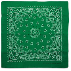 Carolina Paisley Bandana - Kelly Green