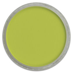 PanPastel Artists' Painting Pastel - Bright Yellow Green, 680.5