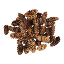 Winter Woods Pine Cones - White Spruce, 1.5oz Bag