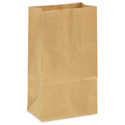 Kraft Paper Bag - Package of 40