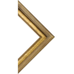 Blick Museo Wood Frame - 8'' x 10'' x 3/8'', Gold