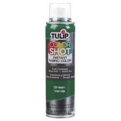 Tulip ColorShot Instant Fabric Color Spray - Green