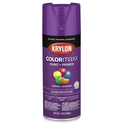 Krylon Colormaxx Spray Paint - Rich Plum, Gloss, 12 oz