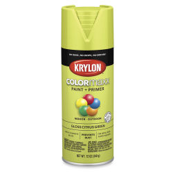 Krylon Colormaxx Spray Paint - Citrus Green, Gloss, 12 oz
