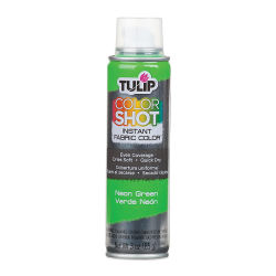 Tulip ColorShot Instant Fabric Color Spray - Neon Green
