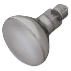 Chromalux Light Bulb - LED, 12W, R30