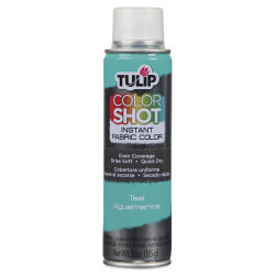 Tulip ColorShot Instant Fabric Color Spray - Teal