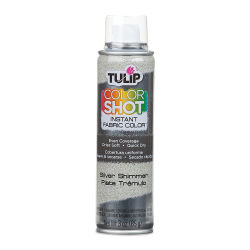 Tulip ColorShot Instant Fabric Color Spray - Metallic Silver