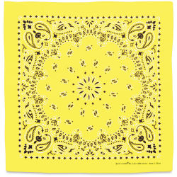 Carolina Paisley Bandana - Yellow