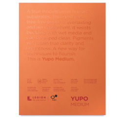 Yupo Watercolor Paper Pad - 9 x 12, Bright White, 10 Sheets