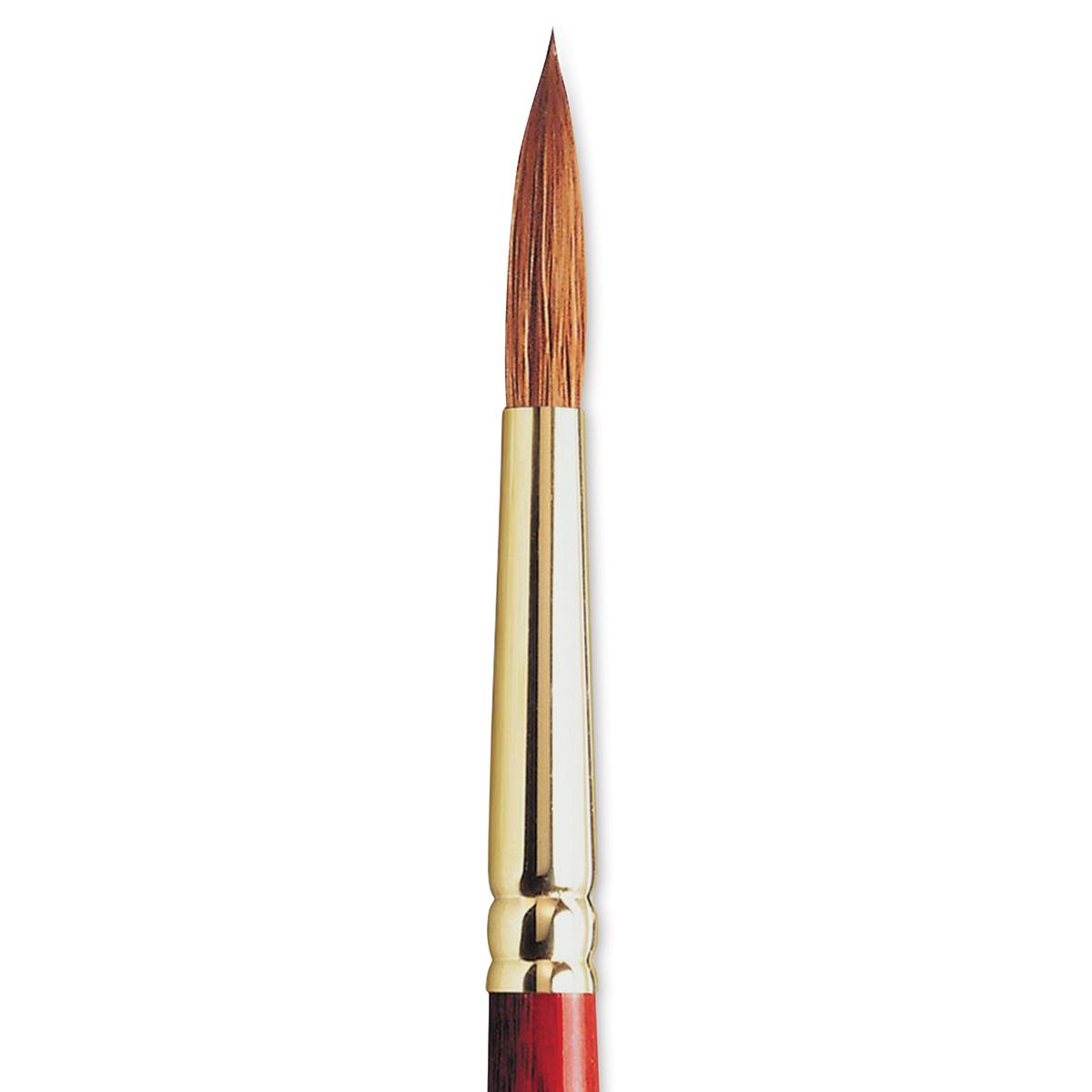 Winsor /& Newton Sceptre Gold II Series 505 Long Handle Brush-Flat #12