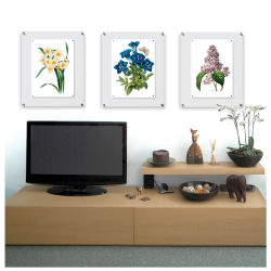 Wexel Art Acrylic Panel Frame - Single Panel Frame, 21'' x 27''