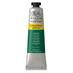 Winsor & Newton Galeria Flow Acrylics - Permanent Green Deep, 200 ml tube
