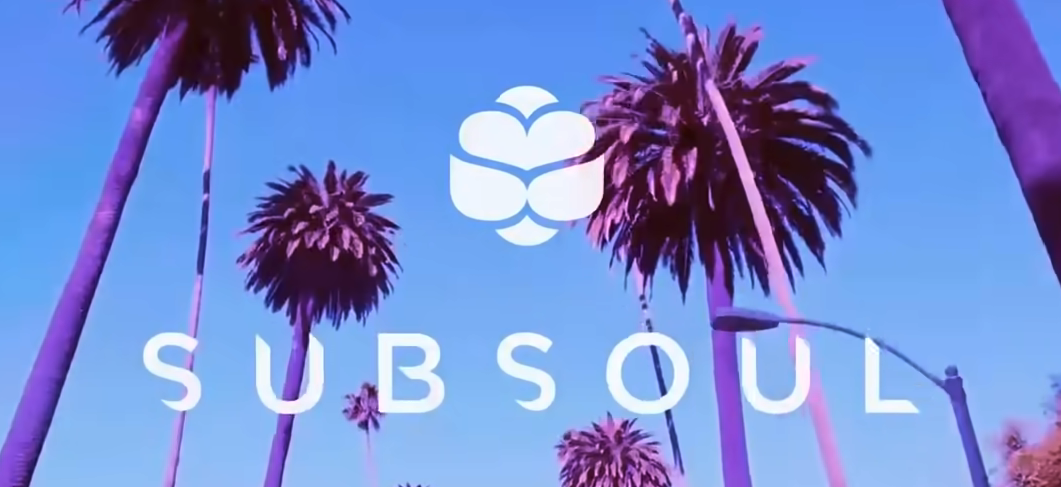 """Palm trees and the text """"Sub soul"""""""