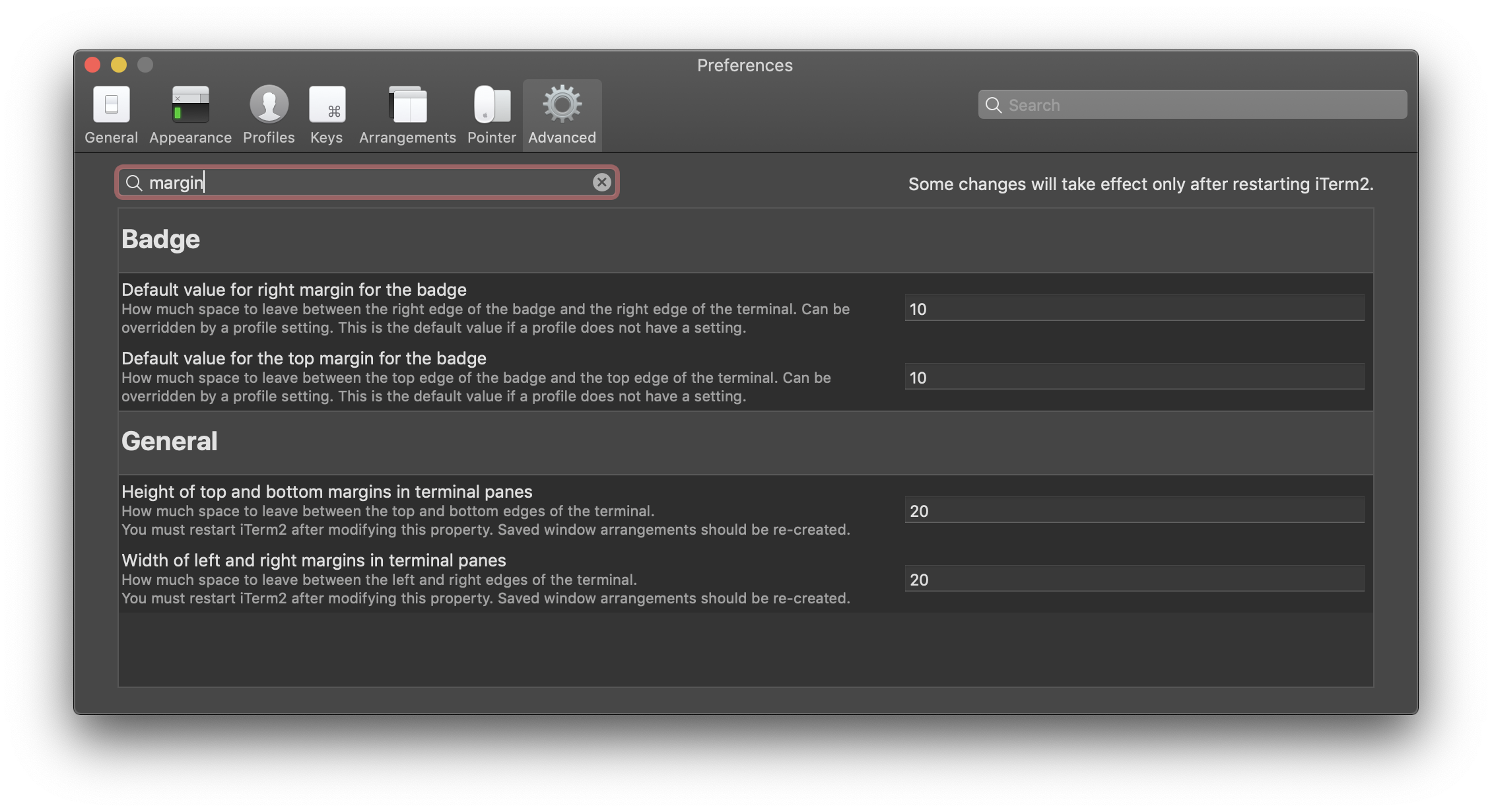 Advanced iTerm2 settings showing the margin options
