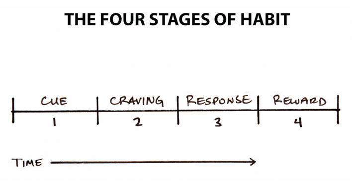 The four stages of habit