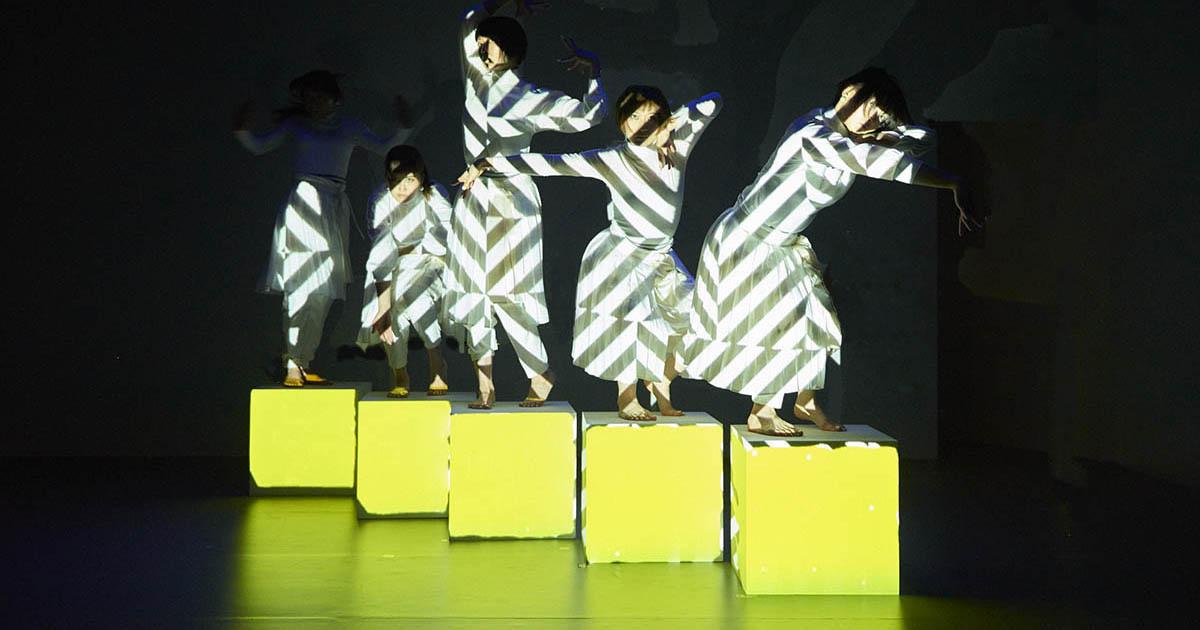 Elevenplay x Rhizomatiks Research - cube