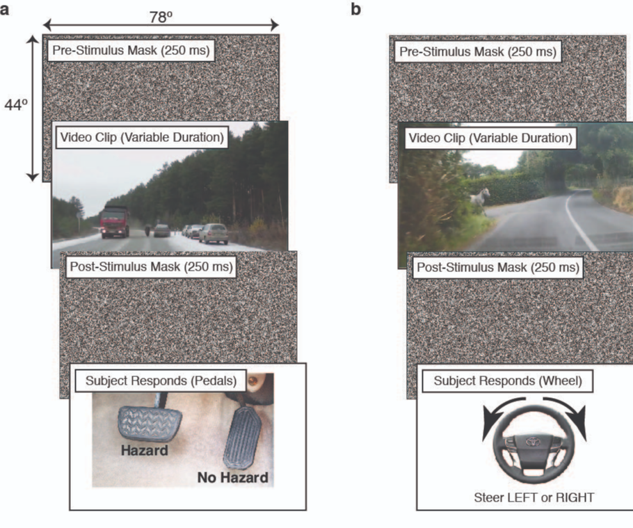 TRI Sponsors MIT Research into Human Response Time to Road Hazards