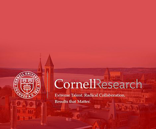 TRI Funds Cornell University Clean Energy Materials Research