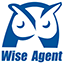 Wise Agent