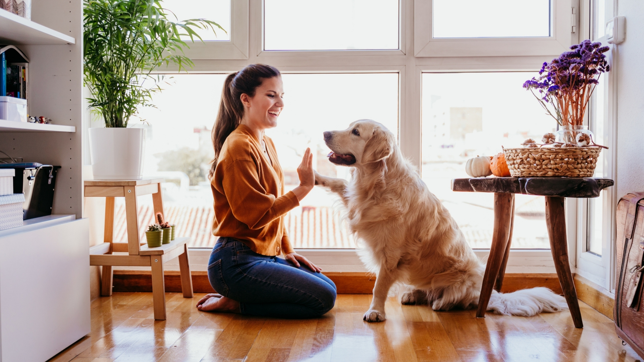10 Ways Dogs Use Body Language To Communicate With Us