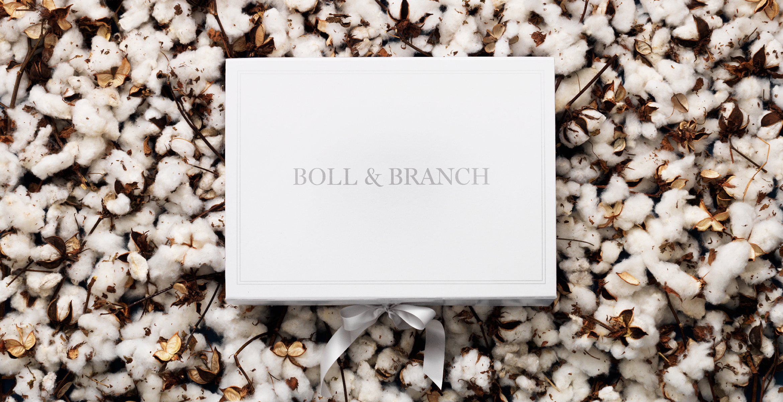 Communal Creative Boll Branch