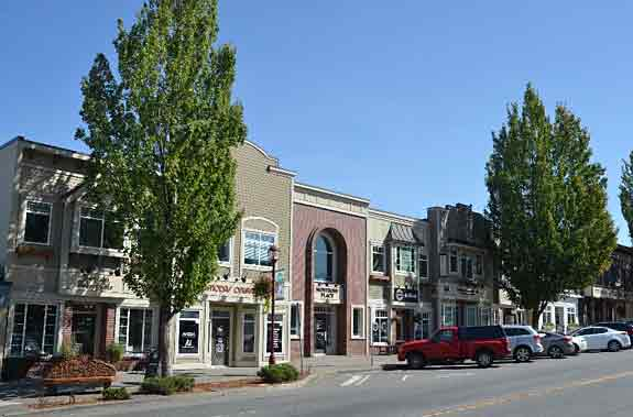 image of buildings behind trees in Historic Abbotsford