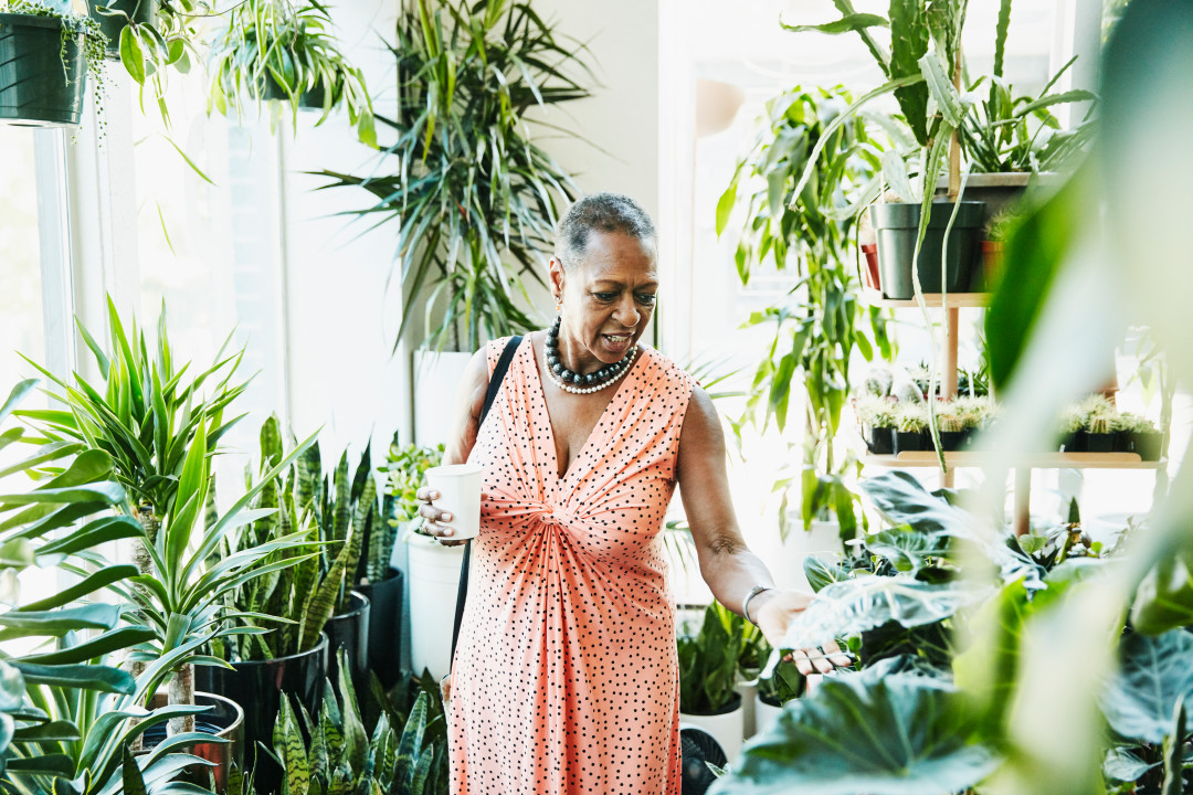 Swoop | a picture of a lady shopping in a plant store