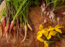 Swoop | artisanal carrots, radishes and yellow edible flowers laid out on a table