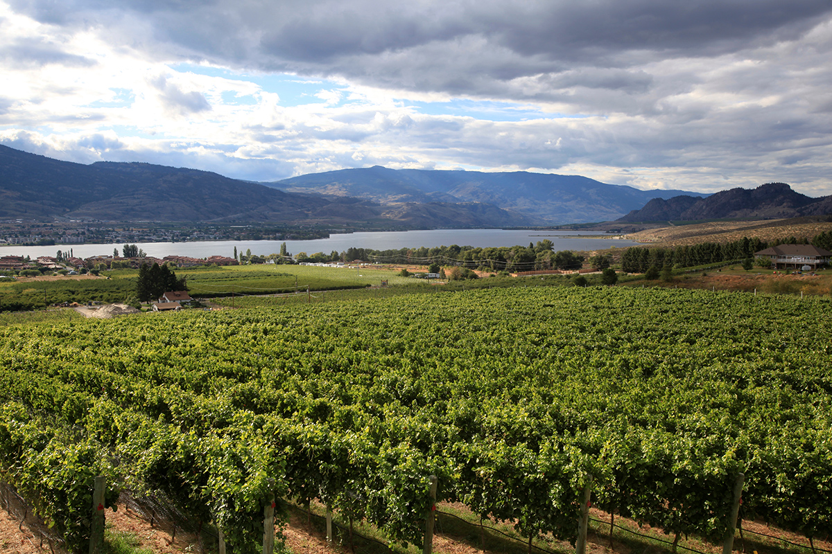 image of winery outside of Abbotsford