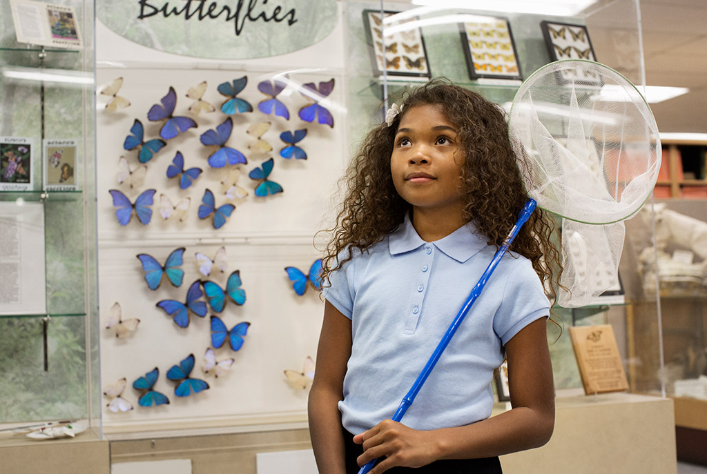Swoop | a female child wearing a blue polo shirt in front of a butterfly display in Edmonton