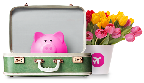Swoop piggy in suitcase with colourful spring tulip flowers in a Swoop vase.