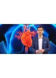 Zugangsweg kardiovaskuläre erkrankungen