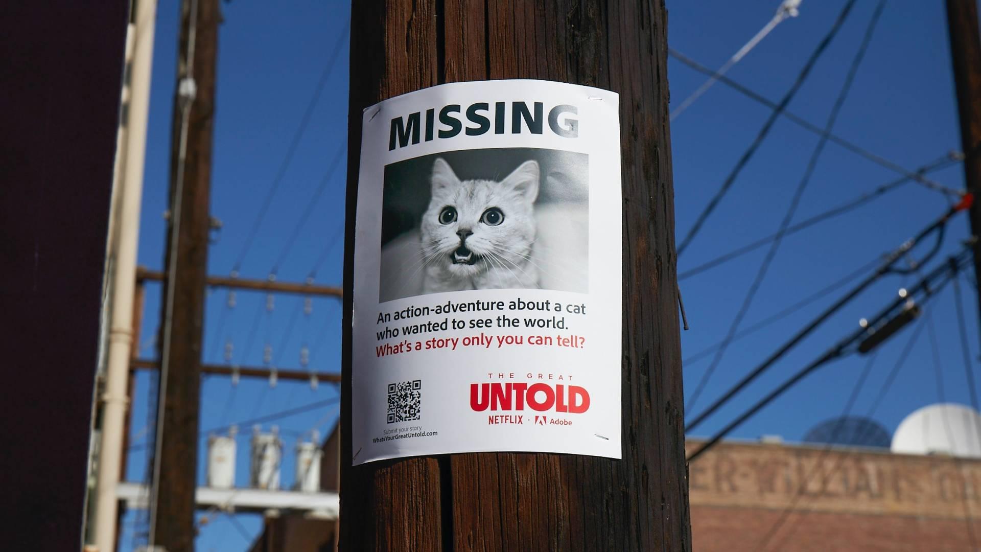 Netflix-TheGreatUntold CatFlyer PR