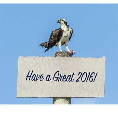 Eagle and Have a Great 2016 Sign