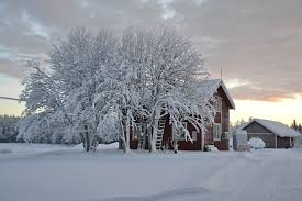 Sweden winter