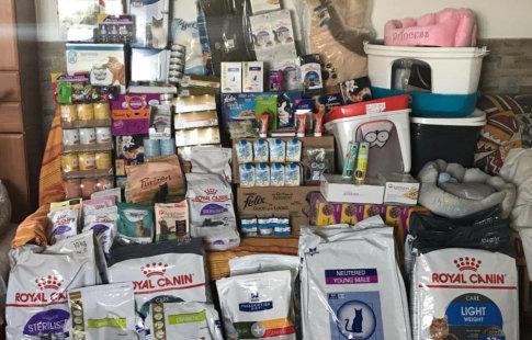 Nuestras donaciones de comida y accesorios