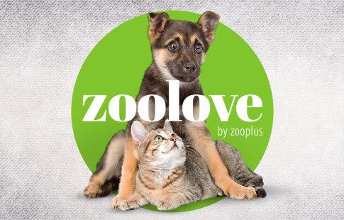 ❤ zoolove