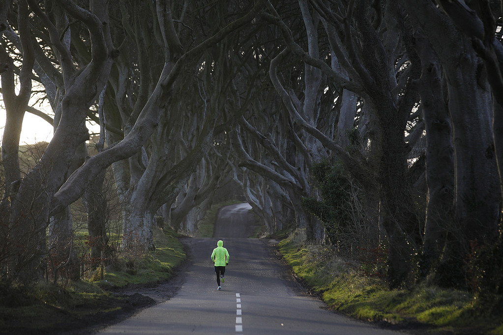TOPP Britain Northern Ireland Dark Hedges