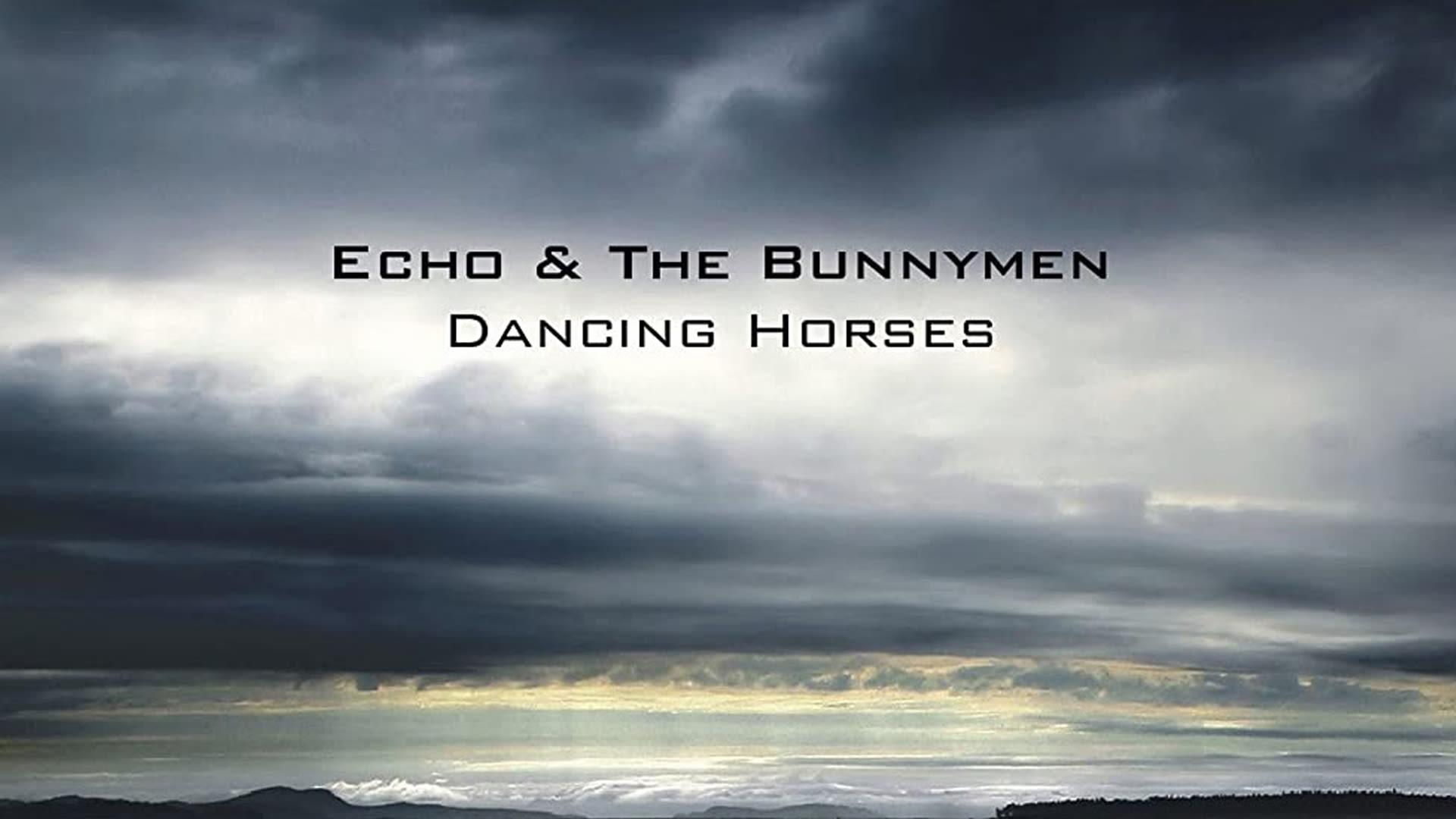 Dancing Horses: Live at the Shepherd's Bush Empire
