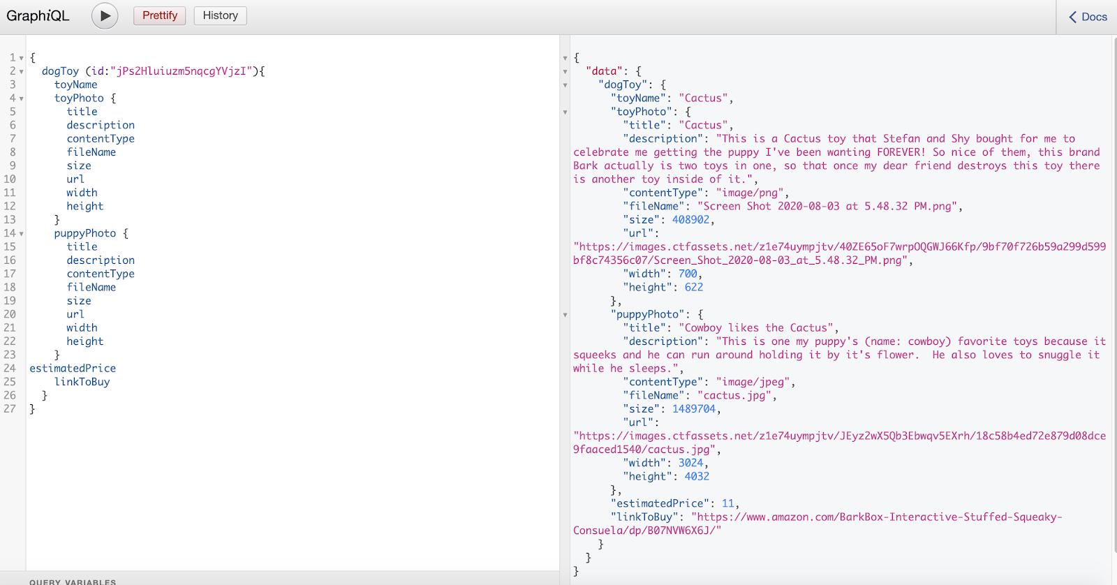 Screenshot of the GraphiQL documentation fields