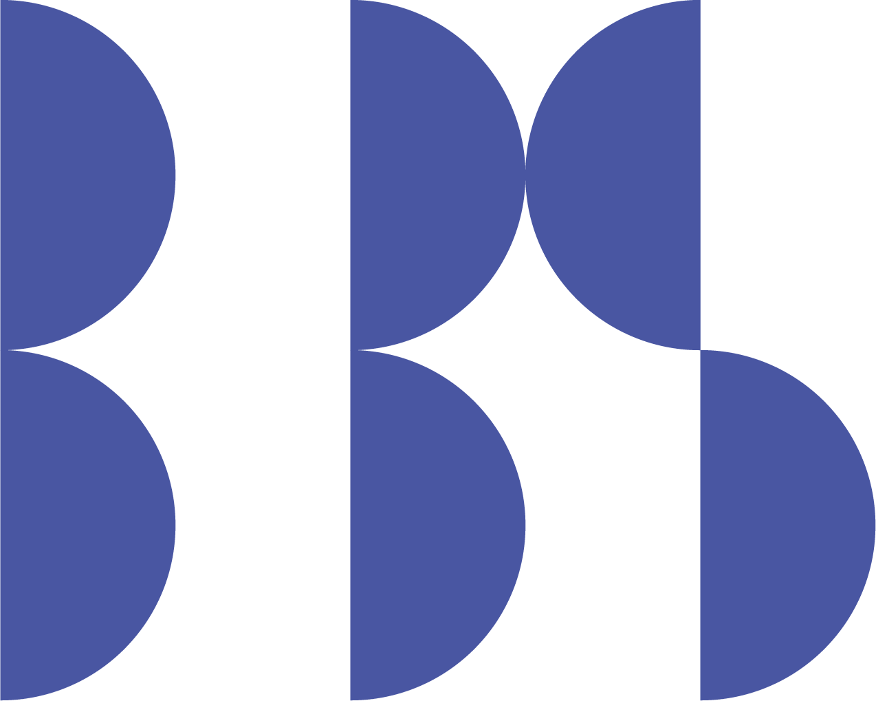 BBS Exe Logo Print Icon Blue 300dpi
