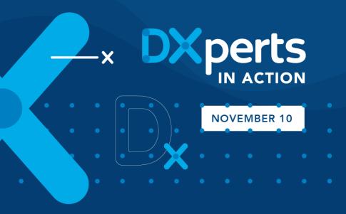 DXperts in Action BNL event Nov 10